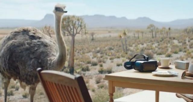 شتر مرغ و دستگاه واقعیت مجازی سامسونگ